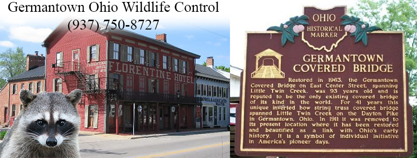 germantown ohio wildlife control