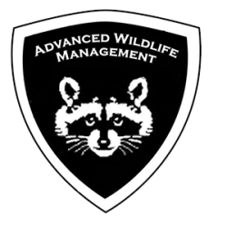 Animal removal Montgomery County Ohio