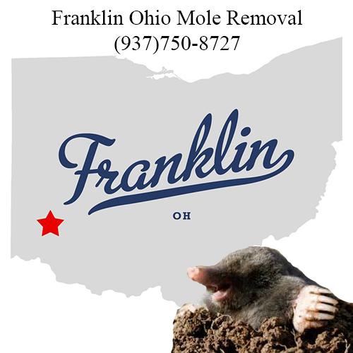 franklin ohio mole removal