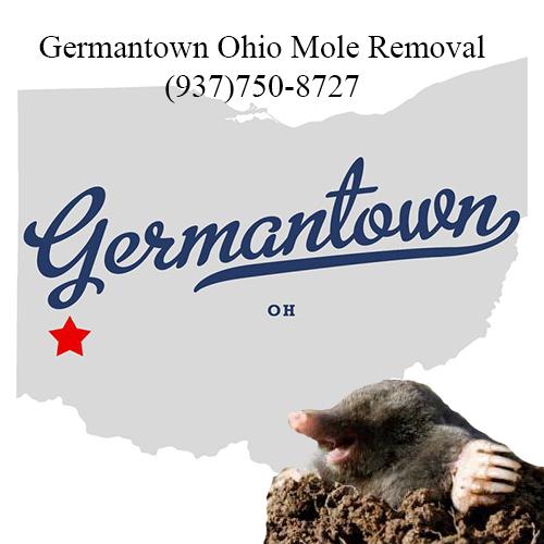 germantown ohio mole removal
