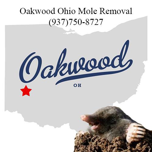 oakwood ohio mole removal