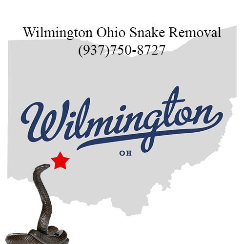 wilmington ohio snake removal