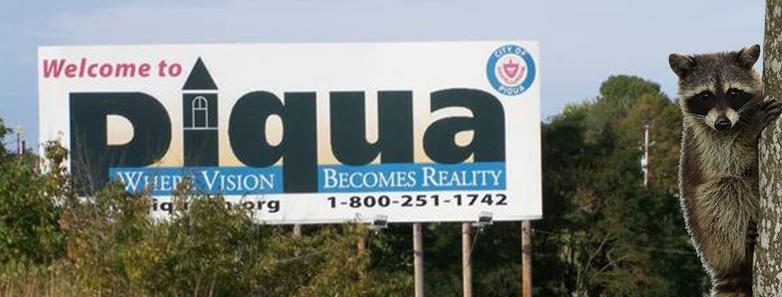 Piqua Ohio Wildlife Control